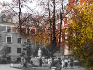 otkroj-muzej-800x450