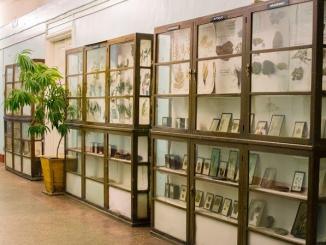 botanicheskij-muzej-800x450