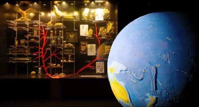Фото www.expedia.com